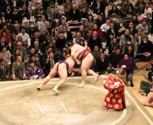 Chanko en sumo cover-1