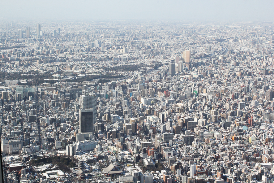 Skytree Blog-6