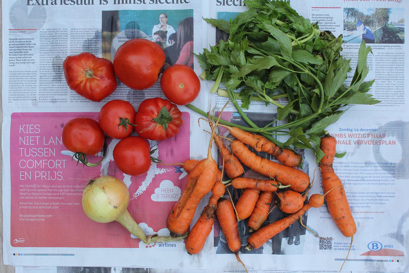 groenten-klein