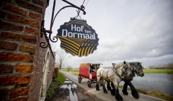 hof_ten_dormaal33