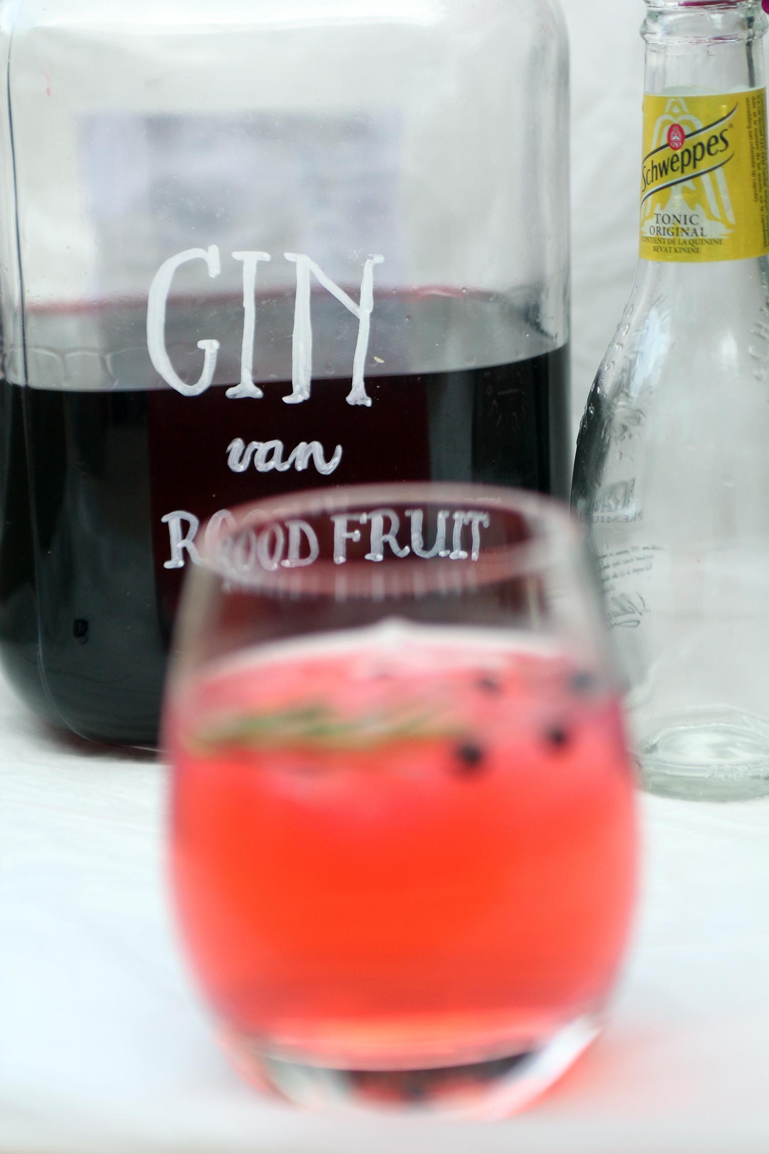 gin-4