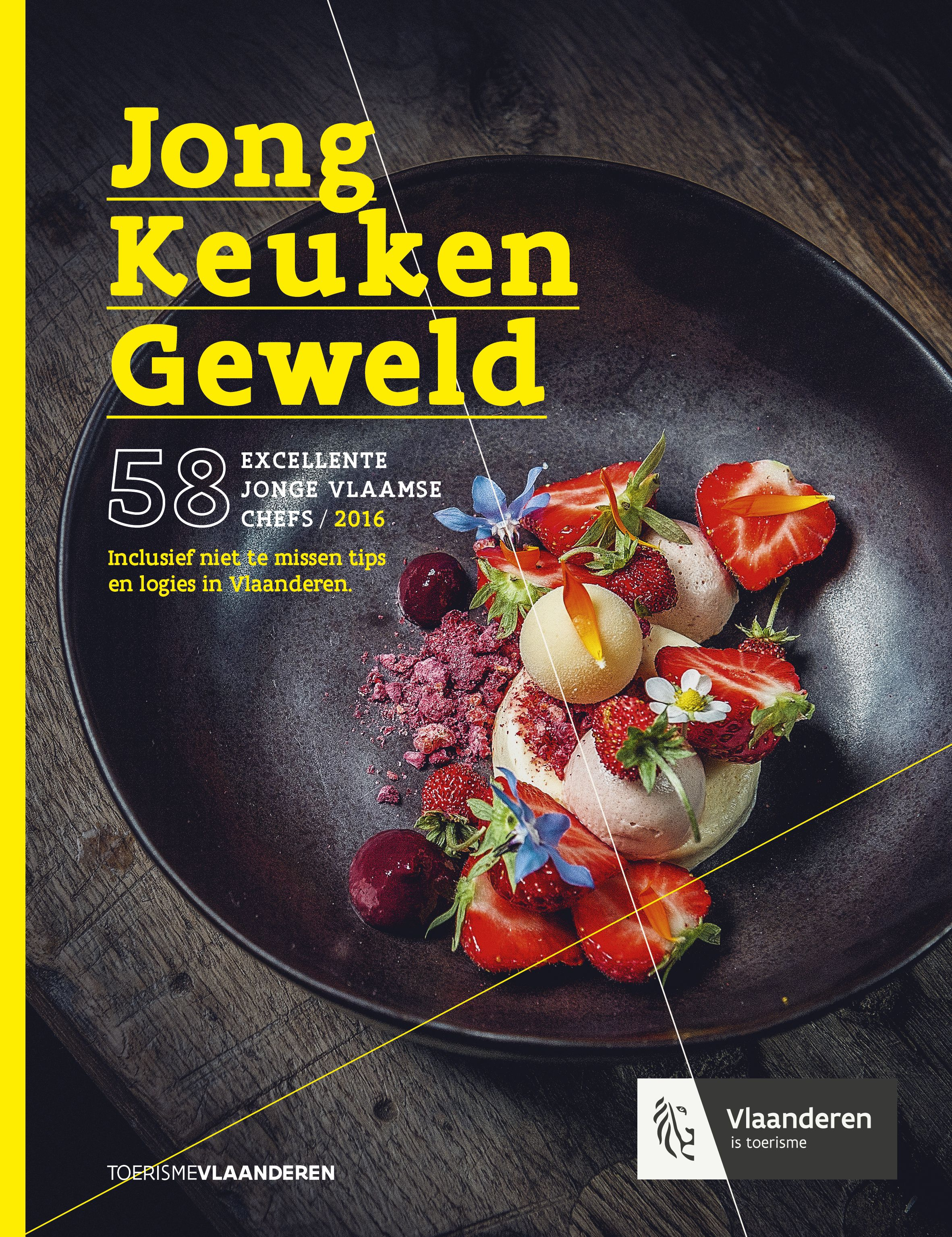 Jong keukengeweld_2015_NL_COVER