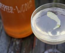 wodka-cover-2
