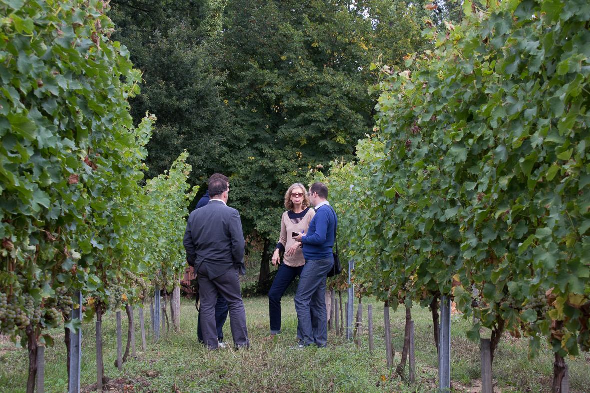 Bordeaux Wine Trip 2013 sept-19