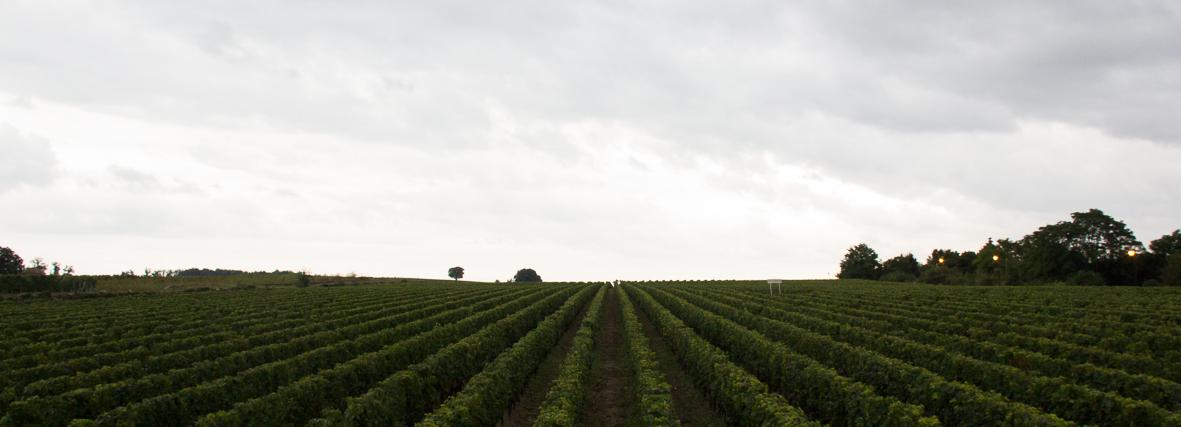 Bordeaux Wine Trip 2013 sept-68