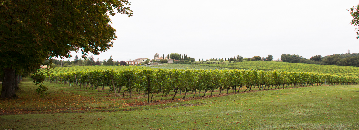 Bordeaux Wine Trip 2013 sept-83