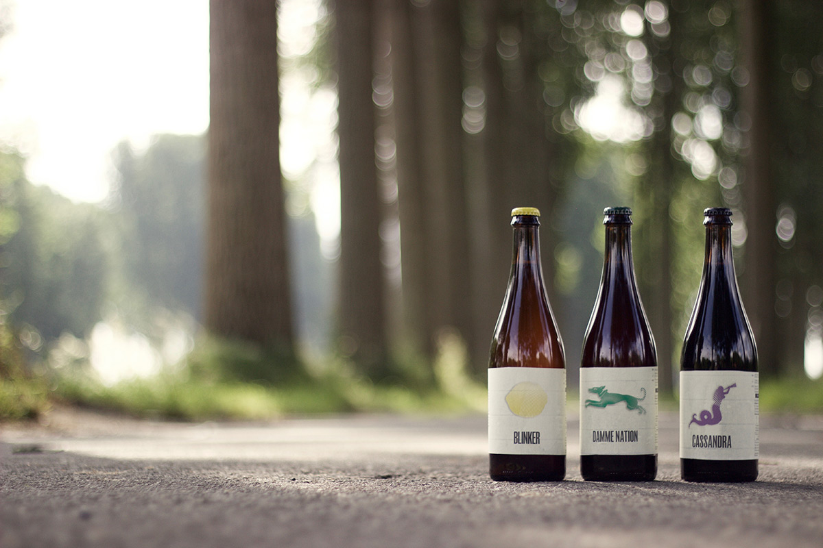 Siphon-Brewing-1